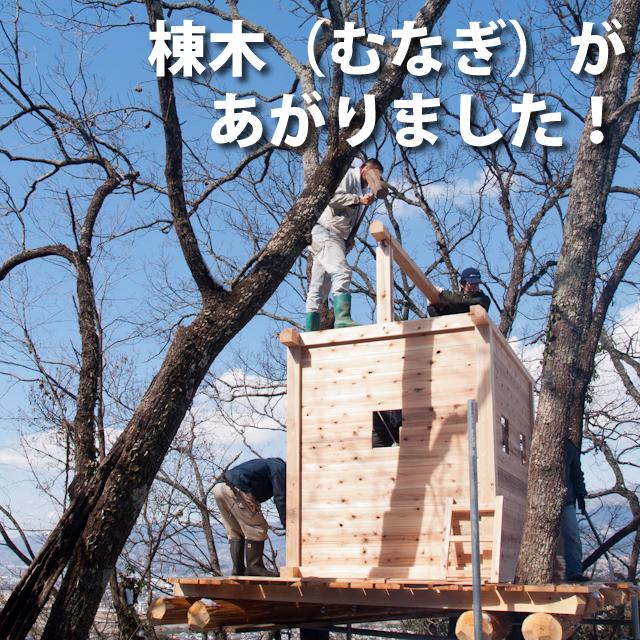 棟木が上がりました