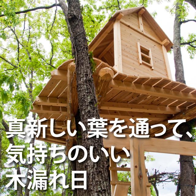 木漏れ日ツリーハウス